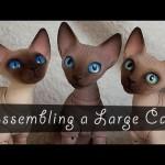 Assembling A Large Cat