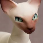 Assembling A Resin Cat / Part #2: Airbrushing